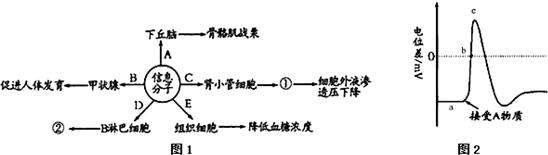 宋法棠庇护下的腐败分子--沈玉成(转载)_职场天地_论坛_天涯社区