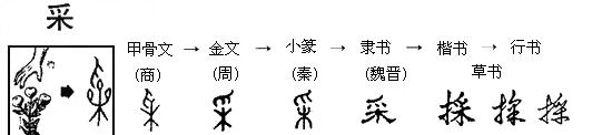 安徽政协委员名单及排名