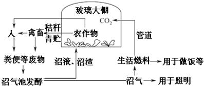 安徽省中小学学籍管理系统
